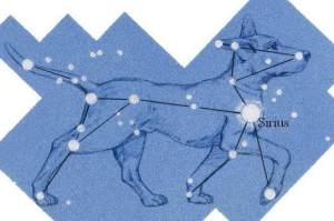 Sirius Dog Star